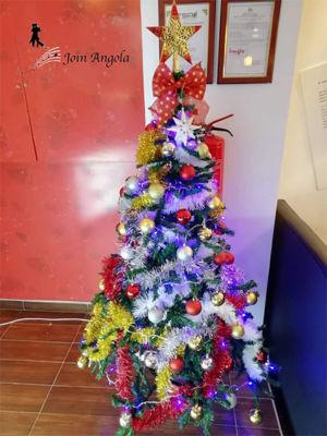Christmas tree in a restaurant in Luanda.