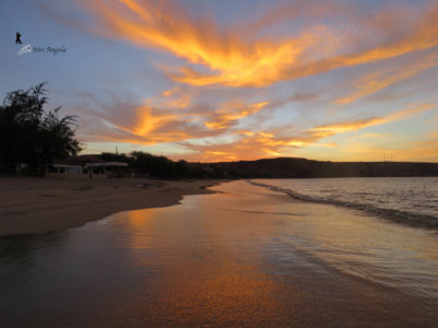 In Baia Azul, you'll be able to see some really spectacular sunsets. Have a drink to enjoy on the sand, or buy one at the bars and restaurants there.
